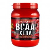 ActivLab BCAA XTRA (500 гр)