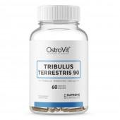 OstroVit Tribulus Terrestris (60 таб)